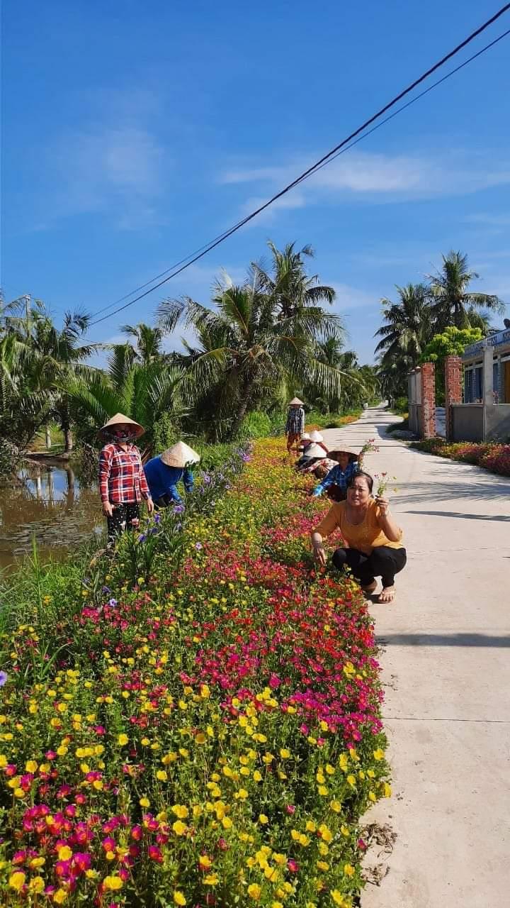 Chi hội phụ nữ ấp Tân Bình chung sức xây dựng nông thôn mới